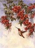 Hummingbird E