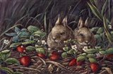Strawberry Bunnies