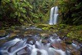 Beauchamp Falls II
