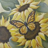 Large Butterfly and Sunflower