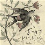 I Sing Praises