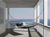Hammock & Pillows