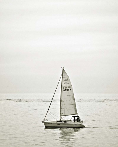 Sailboat D Poster by Toula Mavridou-Messer for $40.00 CAD