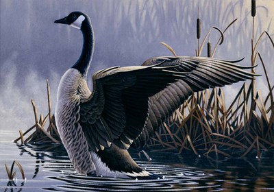 1992 Canada Goose Poster by Wilhelm J. Goebel for $65.00 CAD
