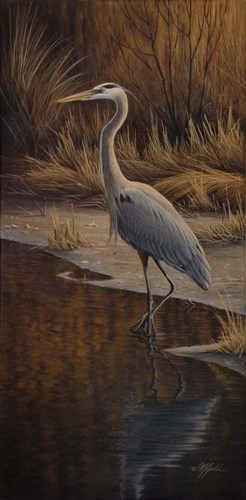 Heron Wading Poster by Wilhelm J. Goebel for $52.50 CAD