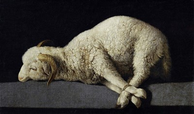 Agnus Dei, 1635-1640 Poster by Francisco De Zurbaran for $45.00 CAD