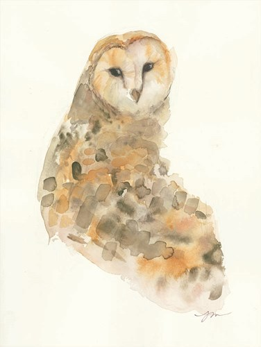 Barn Owl Poster by Jessica Mingo for $41.25 CAD