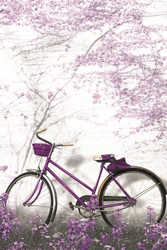 Ultra Violet Bicycle Poster by Lori Deiter for $43.75 CAD