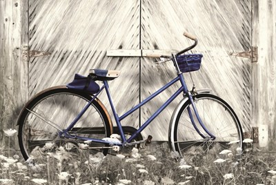 Blue Bike at Barn Poster by Lori Deiter for $43.75 CAD