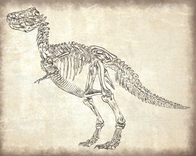 T-Rex Skeleton Poster by Masey St. Studios for $56.25 CAD