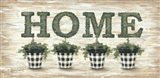 Gingham Topiaries Home