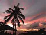 Antigua Sunset I