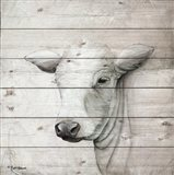 January Cow II