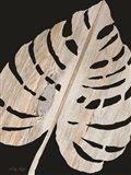 Palm Frond Wood Grain III