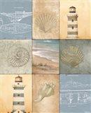 Coast Panels