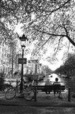 Amsterdam Life
