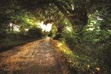 Annan Road
