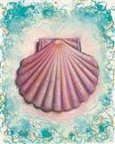 Shell Rosa