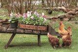Farmer's Flower Cart