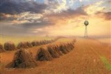 Amish Country Sunrise