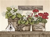 Cherish the Small Things Geraniums