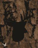Woodland Buck 1
