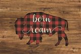 Born to Roam Bison