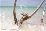 Beachwood I