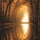 Lochem Reflections