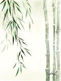 Bamboo Nature II