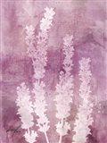 Lavender Blues I