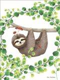 Hanging Around Sloth I