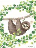 Hanging Around Sloth II