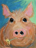 Pig with Yellow Flower