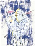 Denim Lamb