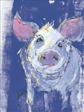Denim Pig