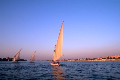 Beautiful Sailboats Riding Along the Nile River, Cairo, Egypt Poster by Bill Bachmann / Danita Delimont for $42.50 CAD