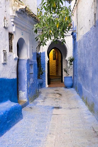 Morocco, Chaouen Narrow Street Lined With Blue Buildings Poster by Emily Wilson / DanitaDelimont for $55.00 CAD