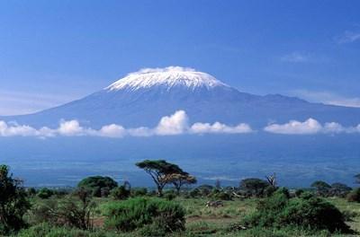 Africa, Tanzania, Mt Kilimanjaro, landscape and zebra Poster by Gavriel Jecan / Danita Delimont for $93.75 CAD