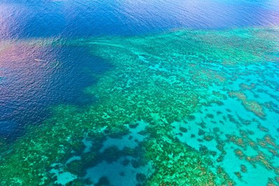 Aerial view of the Great Barrier Reef, Queensland, Australia Poster by Miva Stock / Danita Delimont for $72.50 CAD