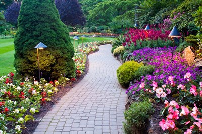 Path and Flower Beds in Butchart Gardens, Victoria, British Columbia, Canada Poster by Terry Eggers / Danita Delimont for $58.75 CAD
