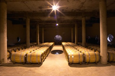 Aging Cellar at Vignoble Poster by Per Karlsson / Danita Delimont for $76.25 CAD