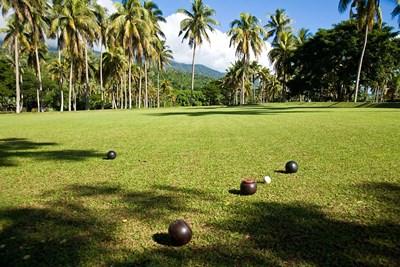 Lawn bowling, Taveuni Estates, Taveuni, Fiji Poster by Douglas Peebles / Danita Delimont for $38.75 CAD