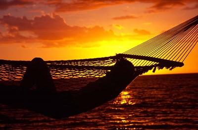 Hammock and Sunset, Denarau Island, Fiji Poster by David Wall / Danita Delimont for $42.50 CAD