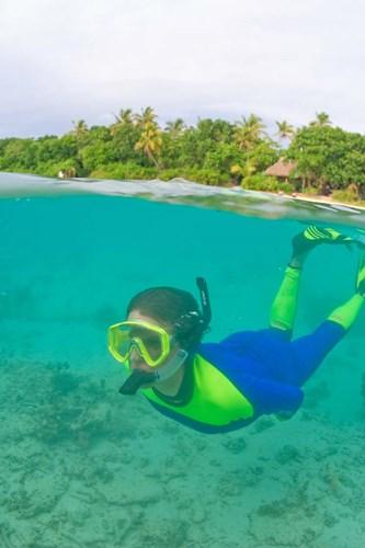 Snorkeling, Picnic island, Viti Levu Fiji Poster by Stuart Westmorland / Danita Delimont for $40.00 CAD