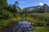The Harenna Escarpment Bale Mountains National Park Ethiopia