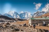 Trekkers and yaks in Lobuche on a trail to Mt Everest
