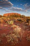 Australia, Uluru-Kata Tjuta NP, Red desert, Ayers Rock