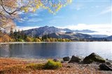 Glendhu Bay, Lake Wanaka, Otago, South Island, New Zealand