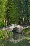 Chinese Scholar's Garden, North Island, New Zealand